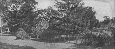 The Martin Gay house and its side yard.  (See the portico at the far right of the photograph.)
