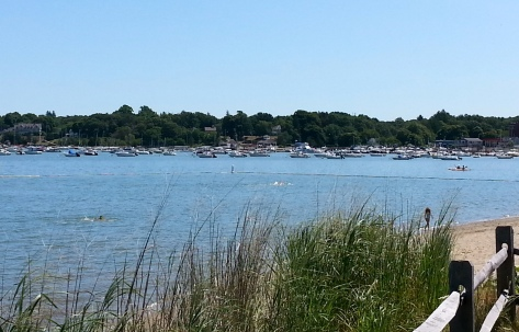View of the southern end of Hingham Harbor from Bathing Beach, 8/9/14